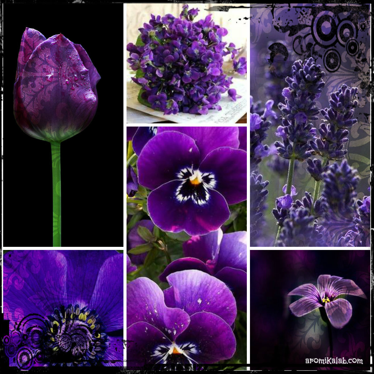 collage purple1