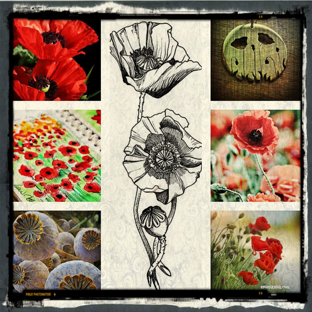 collage poppy