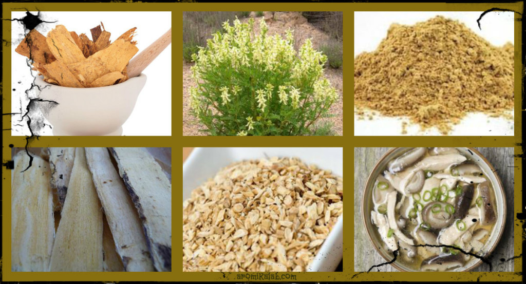 collage astragalus