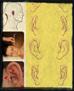 collage ear