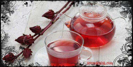 hibiscus5-1