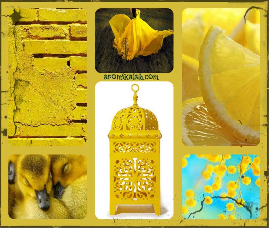collage yellow
