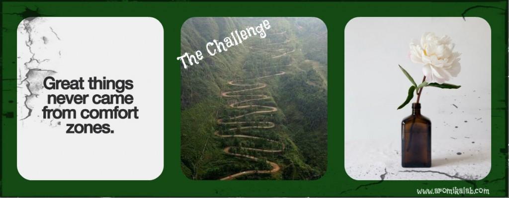 collage challenge