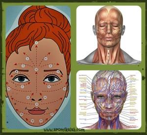 collage selfmassage