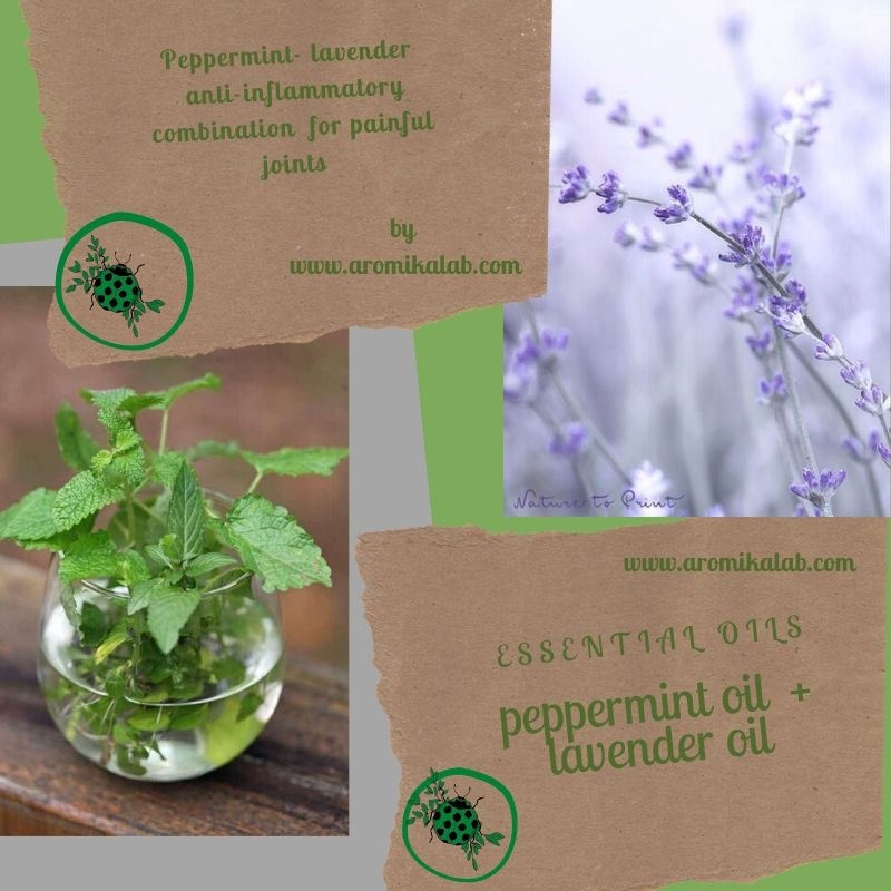 pepermint oil (1)